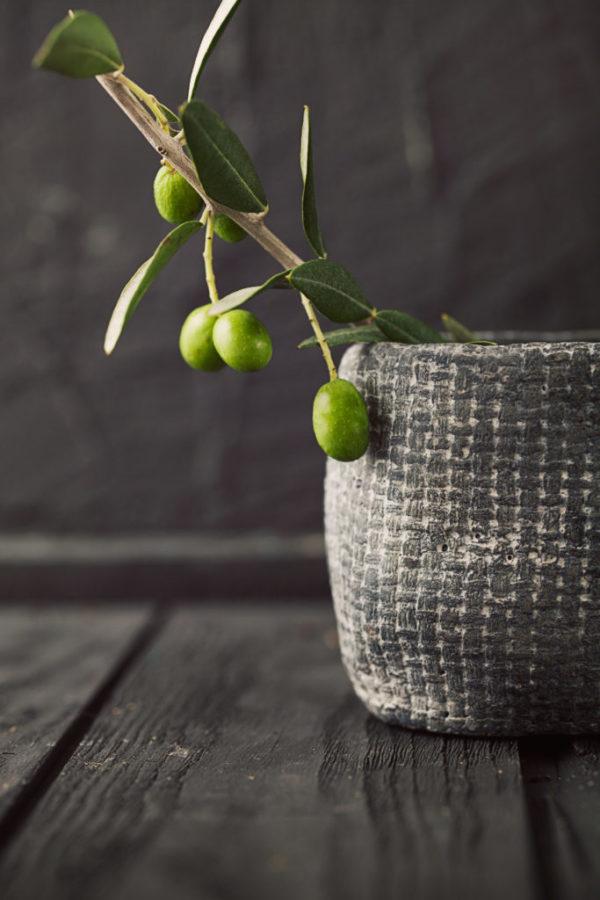 olive italiane, olive frantoio umbria, olive olio